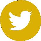 Twitter Lígia Aydar